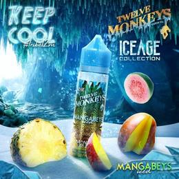 Twelve Monkeys IceAge - Mangabeys Iced 50ml