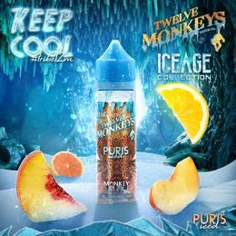 Twelve Monkeys Liquids IceAge - Puris Iced 50ml